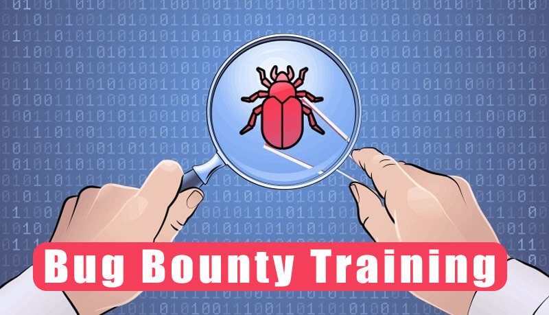 Bug-Bounty-Course-Nexson-IT